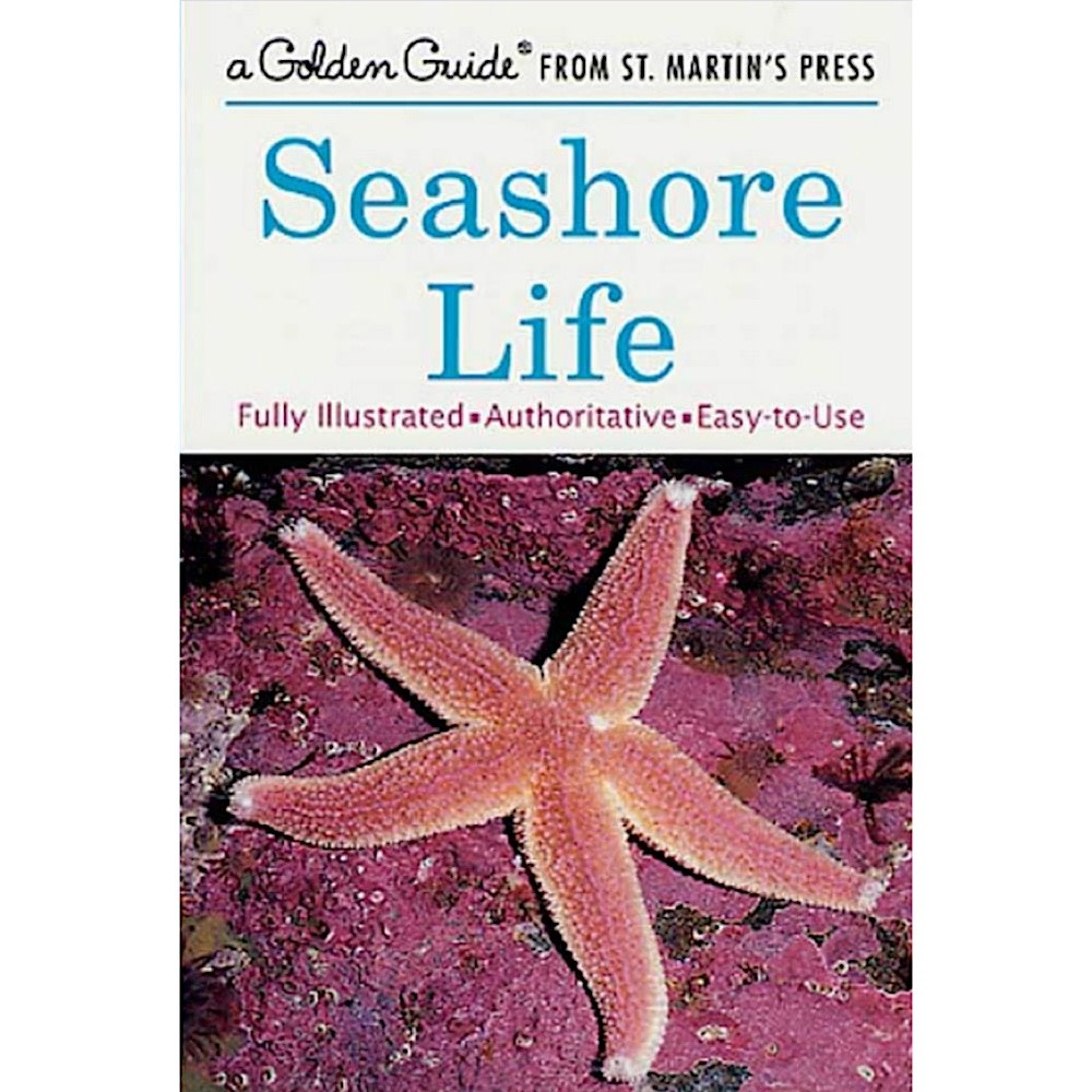 Macmillan A Golden Guide  - Seashore Life by Herbert S. Zim