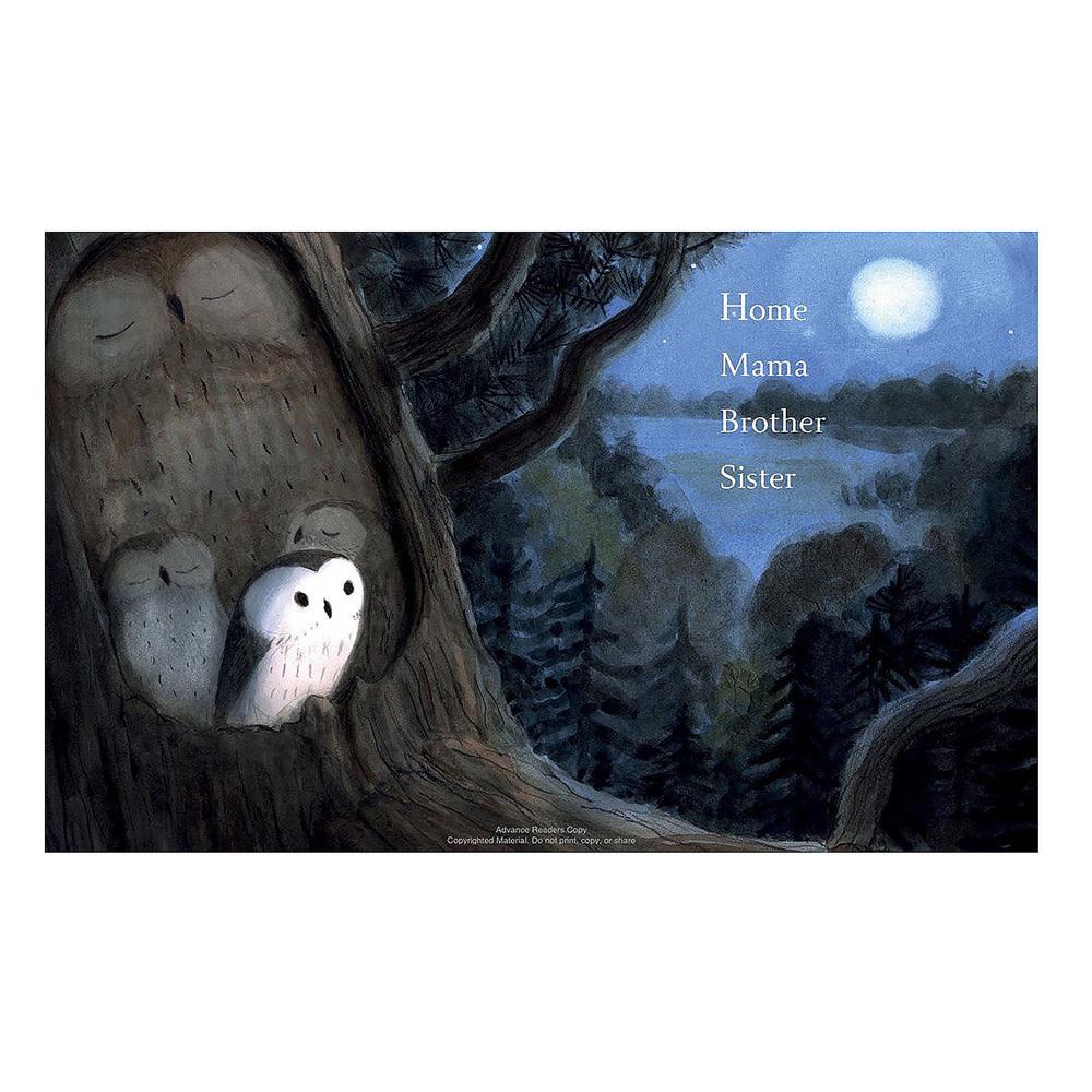 Owl Sees Owl
