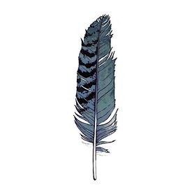 Tattly Tattly Tattoo 2-Pack - Blue Jay Feather