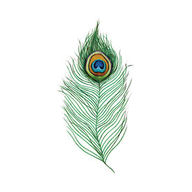 Tattly Tattly Tattoo 2-Pack - Peacock Feather