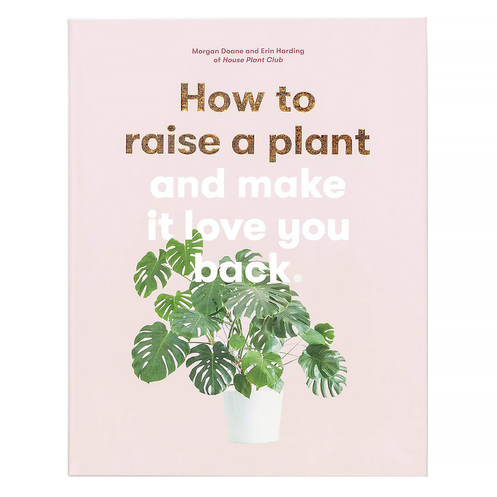 Chronicle How to Raise a Plant
