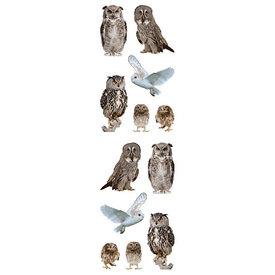 Mrs. Grossman's Mrs. Grossmans Stickers - Owls Strips