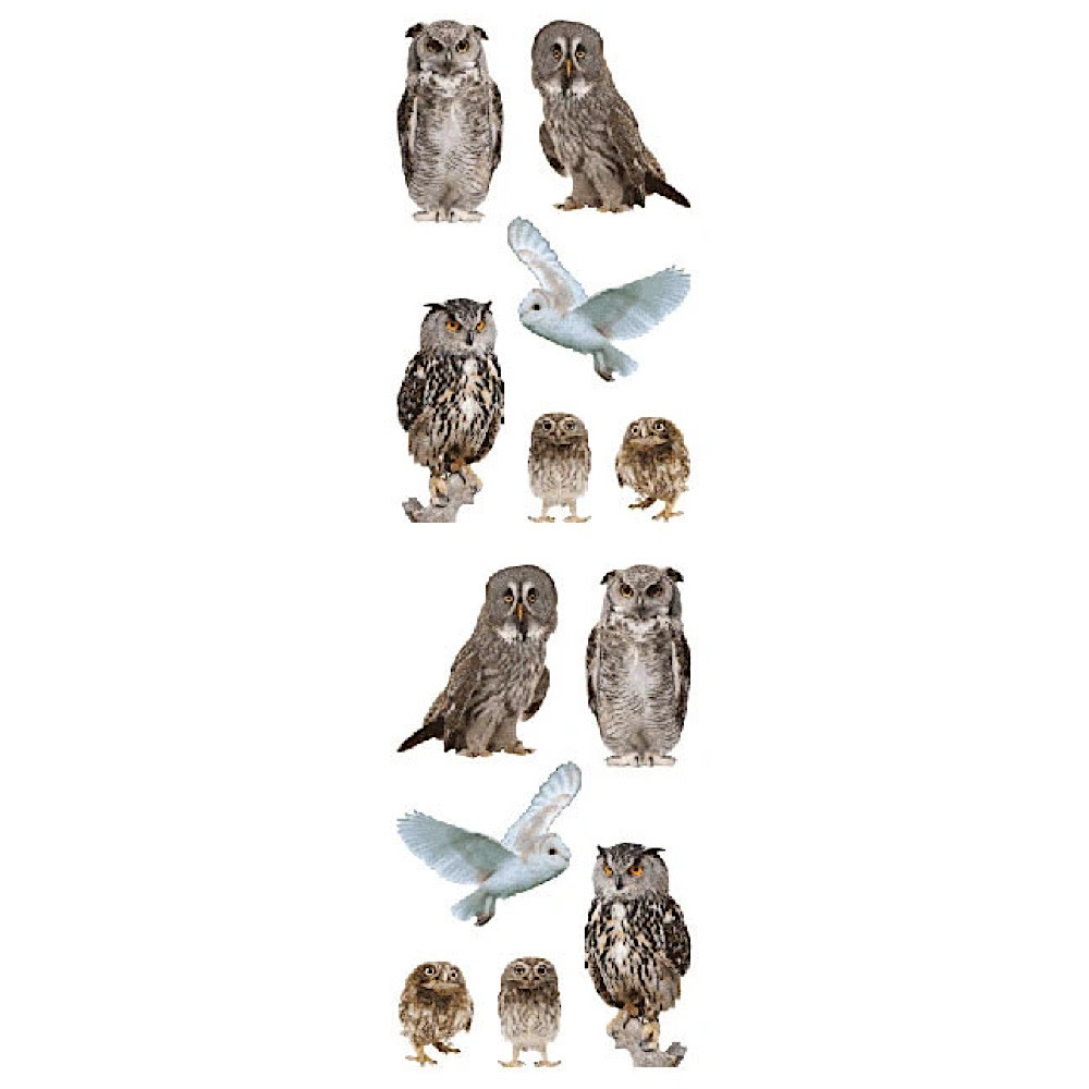 Mrs. Grossmans Stickers - Owls Strips