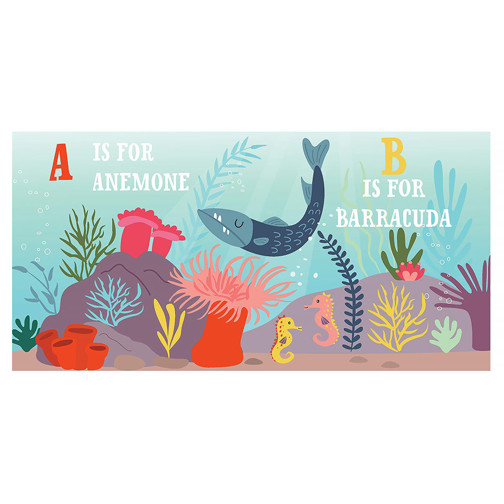 O Is For Ocean Board Book