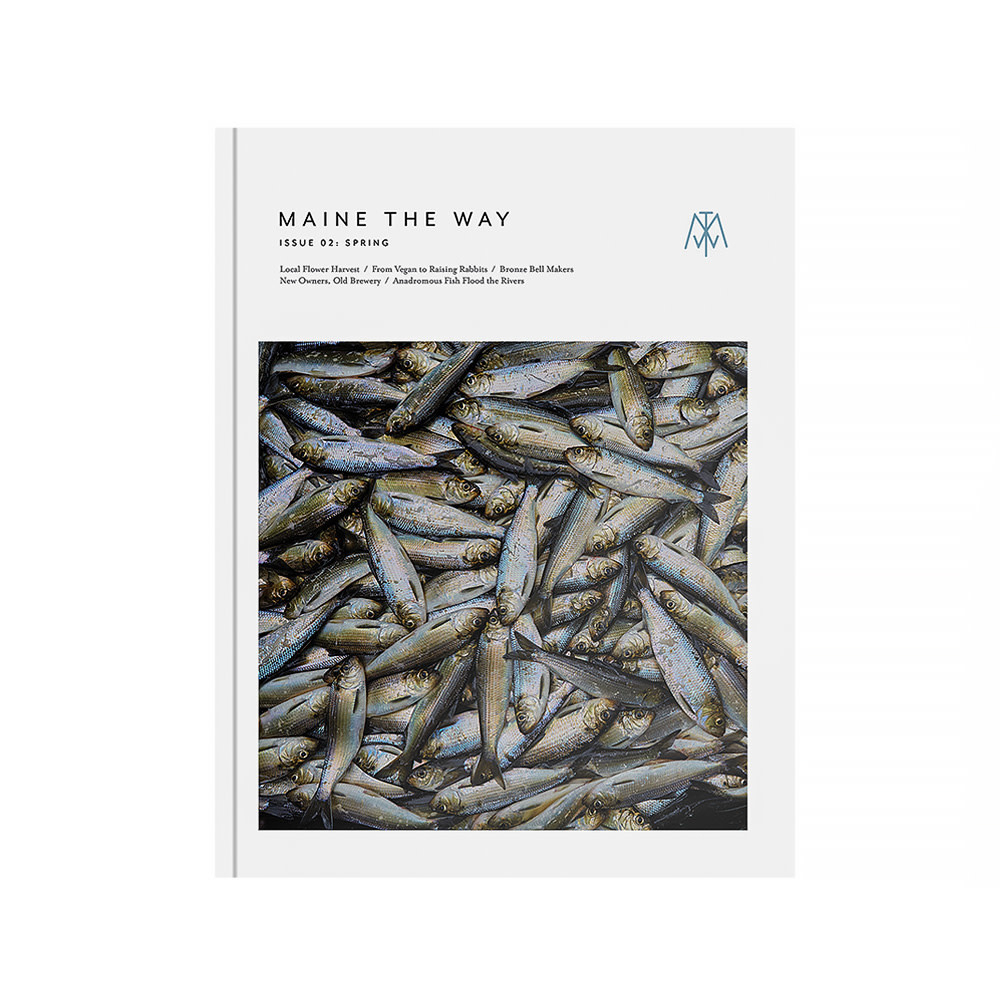 Maine the Way - Issue 2 - Spring