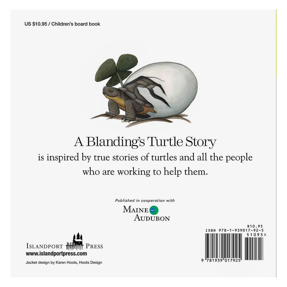 A Blanding's Turtle Story - Board Book