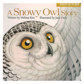 Islandport Press A Snowy Owl Story - Board Book