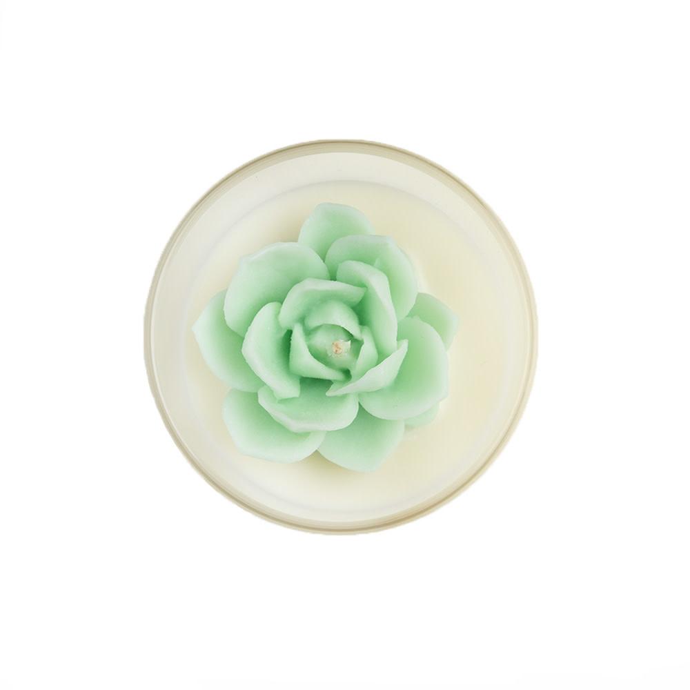 Zoet Studio Succulent Container Candle - Mint