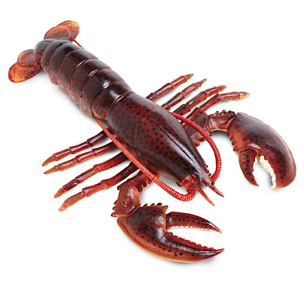 Safari Ltd Maine Lobster
