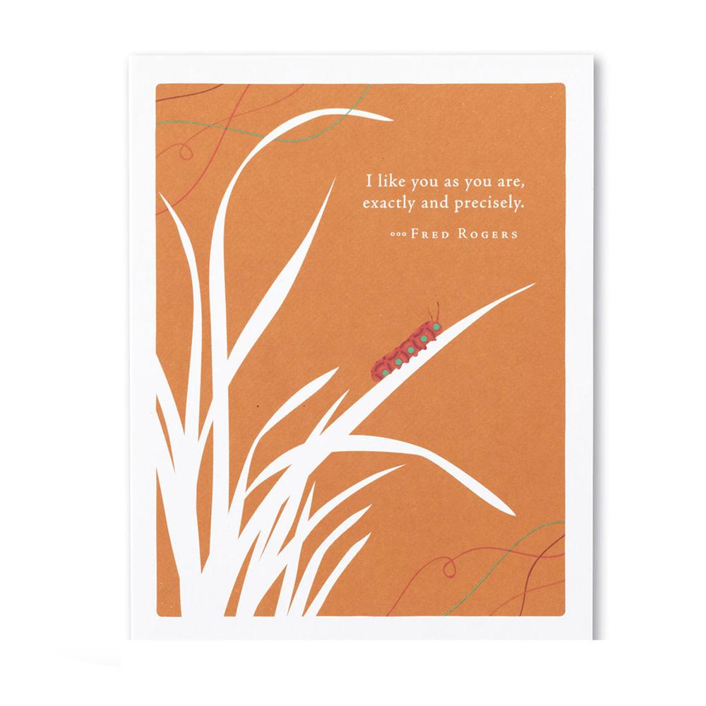 Love & Friendship Card - I Like You As You Are