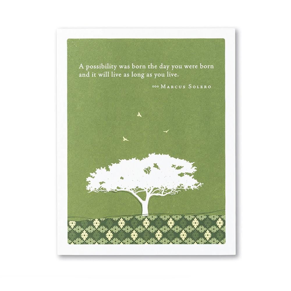 Birthday Card - A Possibility Was Born...