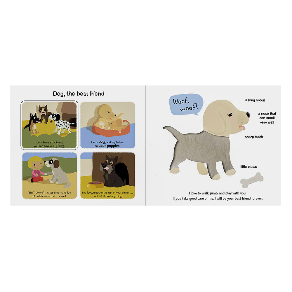 Touch and Explore Pets - Board Book