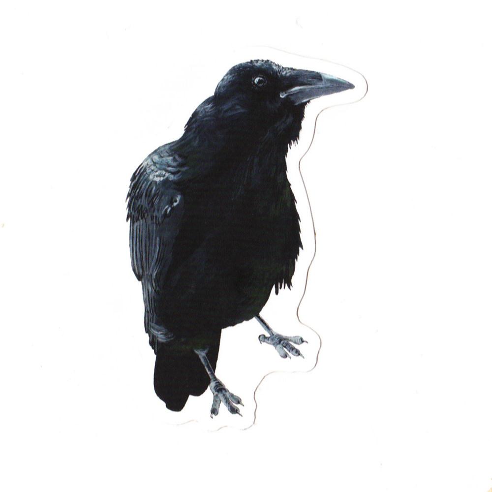 Irene Akio Sticker - Raven