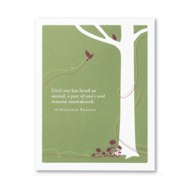 Compendium Pet Sympathy Card - Until One Had Loved An Animal