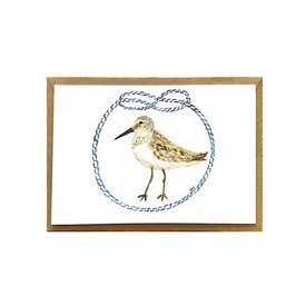 Cindy Shaughnessy Cindy Shaughnessy Greeting Card - Sandpiper
