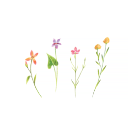 Tattly Tattly Tattoo 2-Pack - Petite Florals