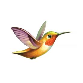 Tattly Tattly Tattoo 2-Pack - Hummingbird
