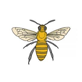 Tattly Tattly Tattoo 2-Pack - Honey Bee
