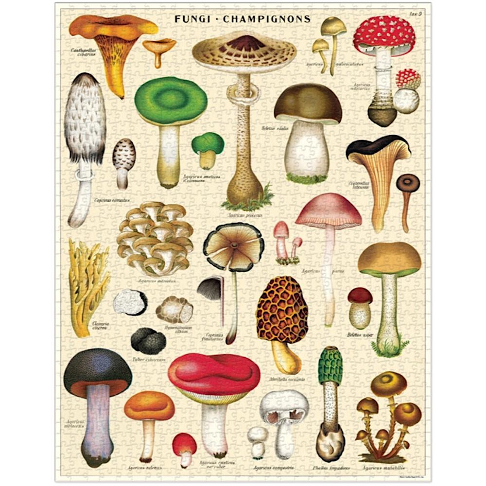 Cavallini Jigsaw Puzzle - Mushrooms - 1000 Pieces