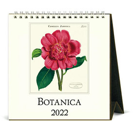 Cavallini Papers & Co., Inc. Cavallini Desk Calendar - Botanica 2022