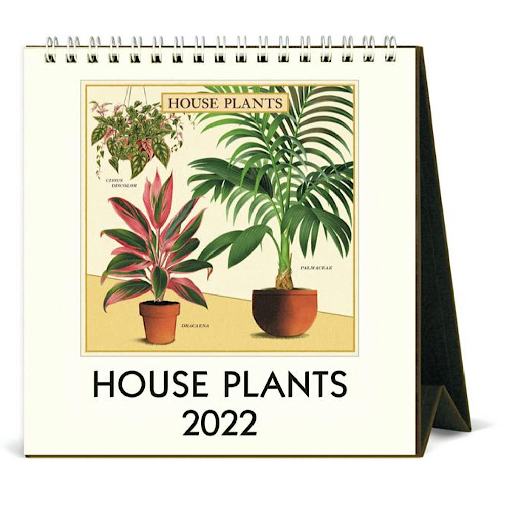 Cavallini Desk Calendar - House Plants 2022