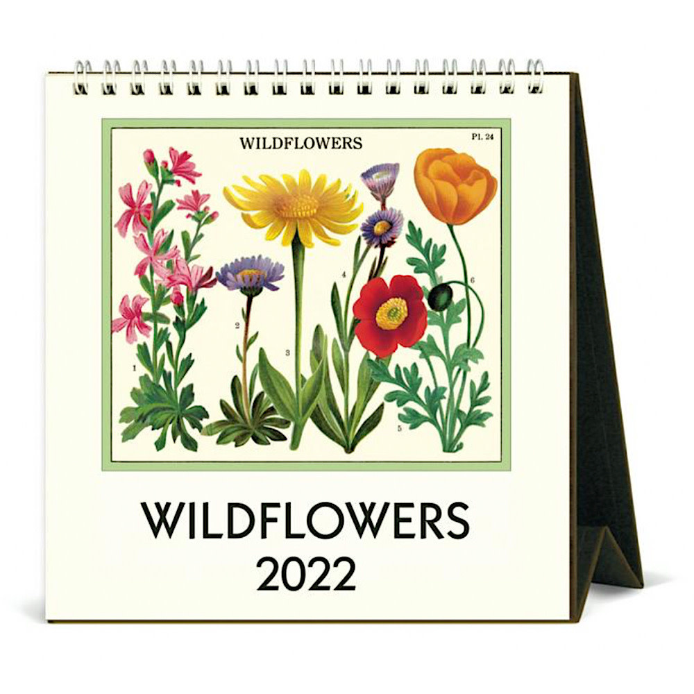 Cavallini Desk Calendar - Wildflowers 2022