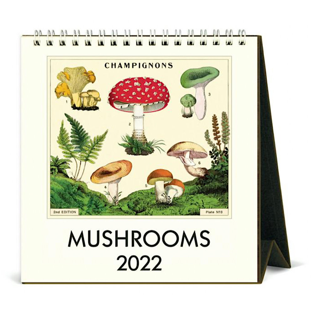 Cavallini Desk Calendar - Mushrooms 2022
