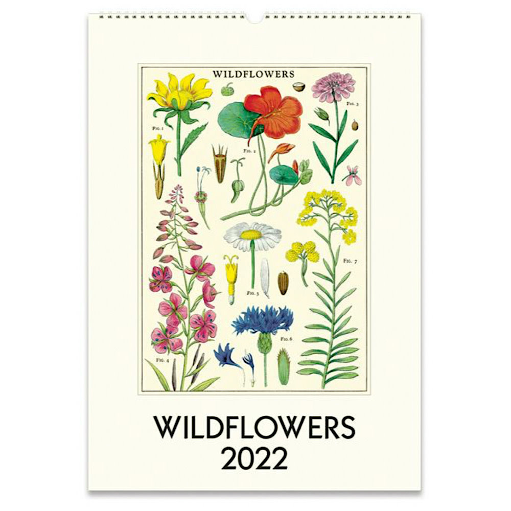 Cavallini Wall Calendar - Wildflowers 2022