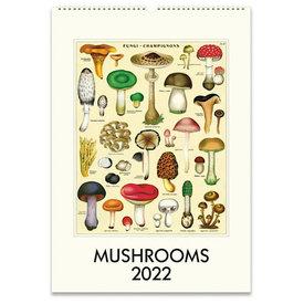 Cavallini Papers & Co., Inc. Cavallini Wall Calendar - Mushrooms 2022