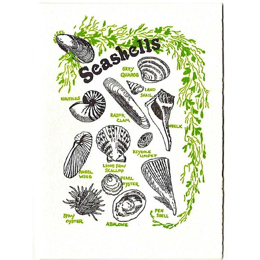 Saturn Press  Seashells Card