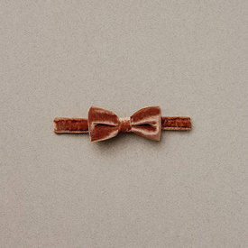 Noralee Noralee Bow Tie - Amber