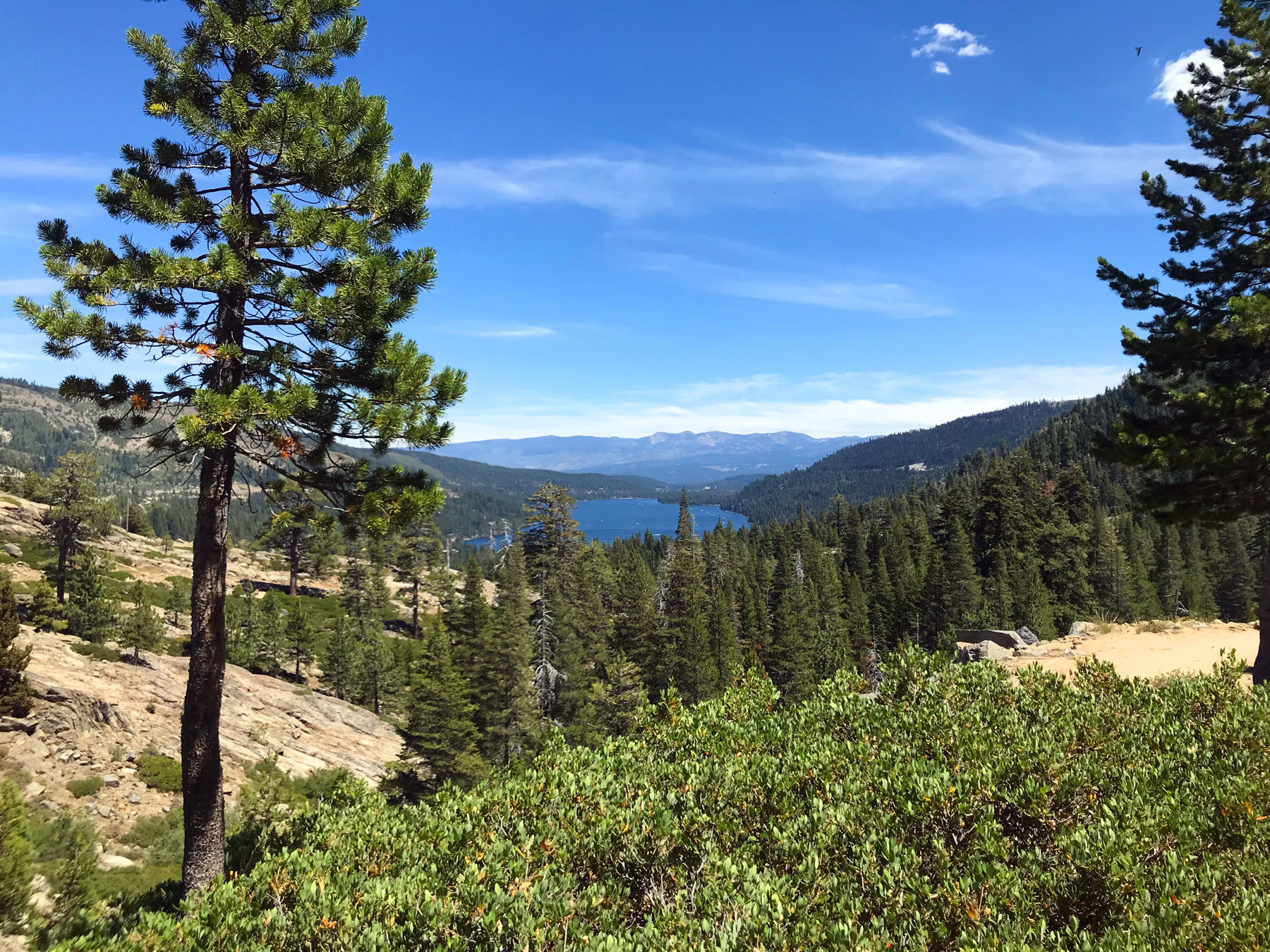 California 89 Hike of the Week - Donner Summit Canyon