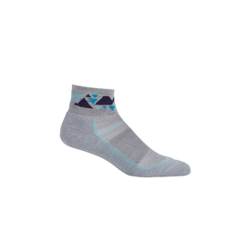Icebreaker Icebreaker Multisport Mini Light Cushion Sock Women's