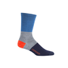 Icebreaker Icebreaker Lifestyle Crew Ultralight Cushion Sock Men's