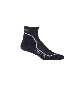 Icebreaker Icebreaker Hike Mini Light Cushion Sock Women's