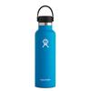 Hydro Flask Hydro Flask 21 oz Standard Mouth w/ Standard Flex Cap