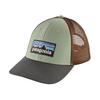 Patagonia Patagonia P6 LoPro Trucker Hat