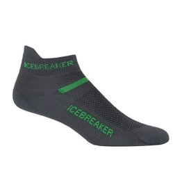 Icebreaker Icebreaker Multisport Micro Ultralight Cushion Men's