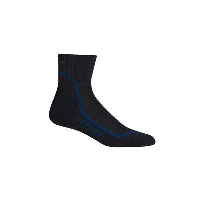 Icebreaker Icebreaker Hike Plus Mini Light Cushion Sock Men's