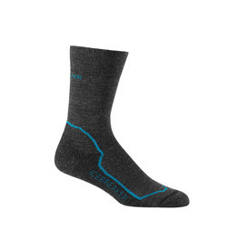 Icebreaker Icebreaker Hike Plus Crew Light Cushion Sock Women's