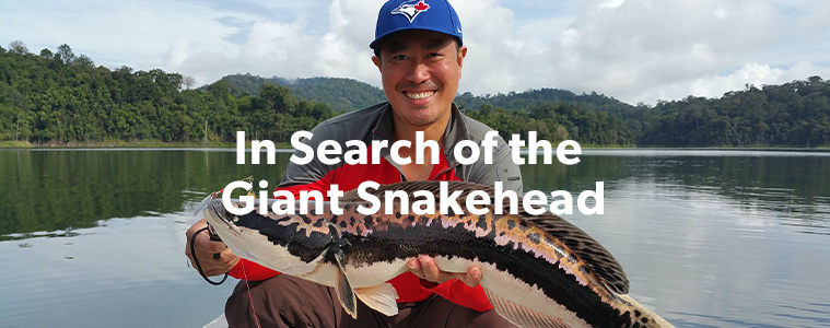 In Search of the Giant Snakehead