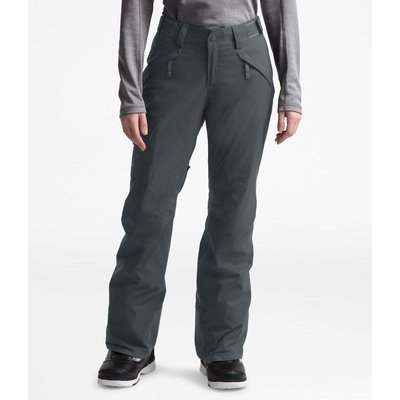 The North Face The North Face Insulated Freedom Pant Women's (Past Season)
