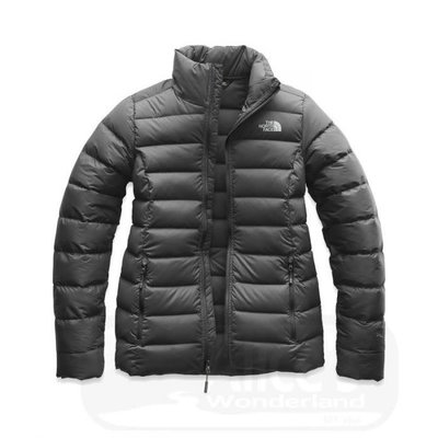 The North Face The North Face Stretch Down Jacket Women's