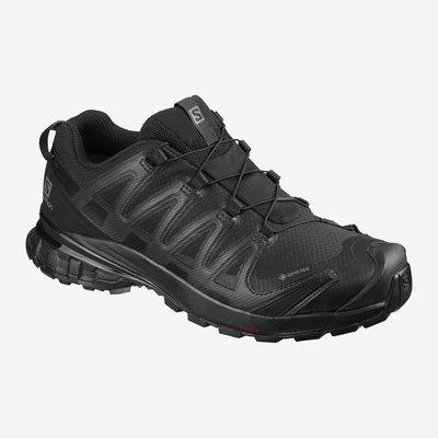 Salomon Salomon XA Pro 3D v8 GTX  Trail Shoe Women's