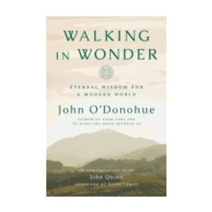 O'DONOHUE, JOHN WALKING IN WONDER by JOHN O'DONOHUE