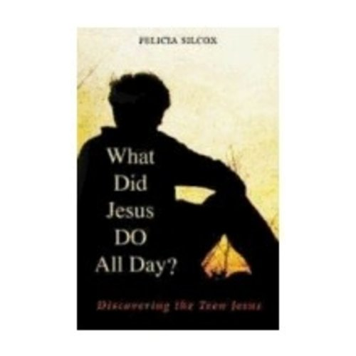 SILCOX, FELICIA WHAT DID JESUS DO ALL DAY: DISCOVERING THE TEEN JESUS by FELICIA SILCOX