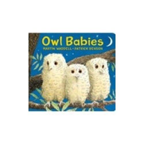 WADDELL, MARTIN OWL BABIES-BOARD ED