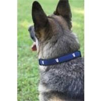 EPISCOPAL SHIELD DOG COLLAR