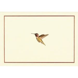 NOTE CARDS - HUMMINGBIRD by Peter Pauper Press