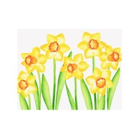 NOTE CARDS - DAFFODIL, Box of 8
